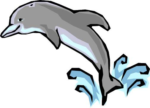 505x363 Dolphin Clipart Clipart Image