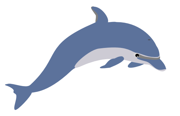 589x380 Dolphins Clipart Bottlenose Dolphin