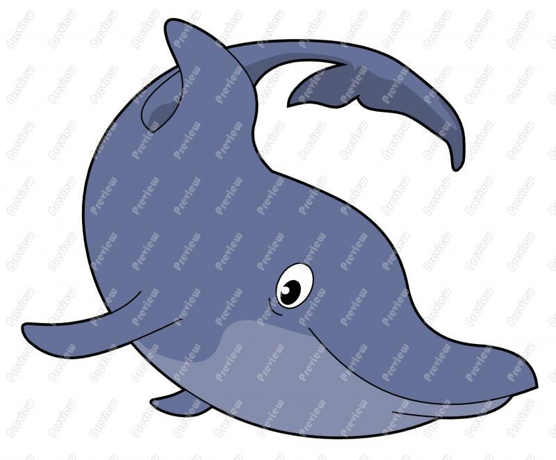 800x662 Bottlenose Dolphin Character Clip Art