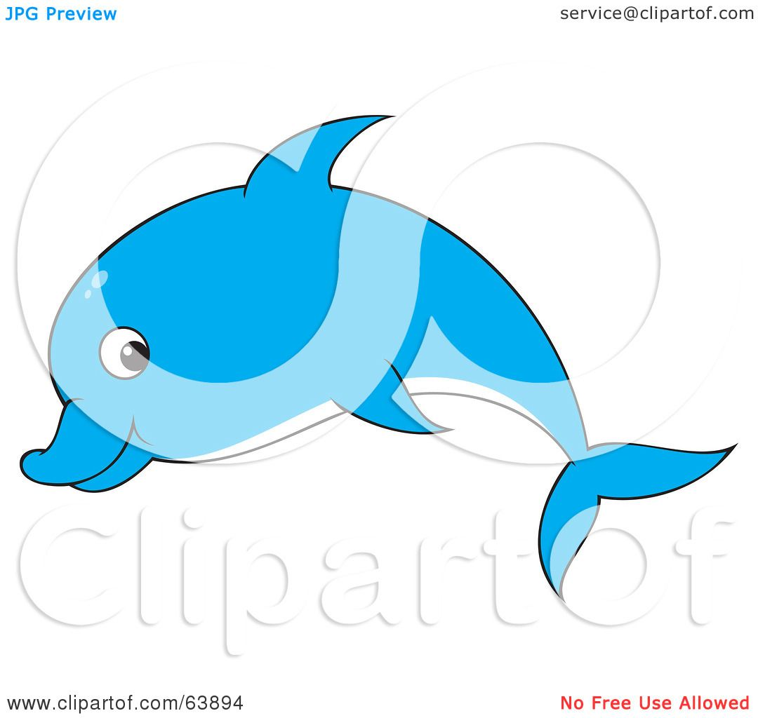 1080x1024 Bottlenose Dolphin Clipart Blue Dolphin