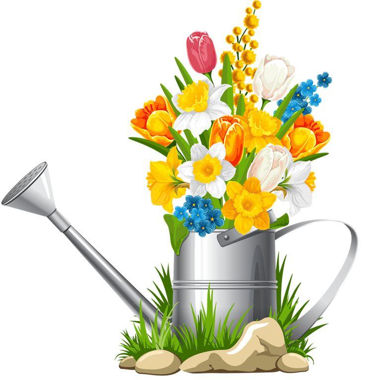 736x767 391 Best Clip Art Flowers Images Clouds, Picasa