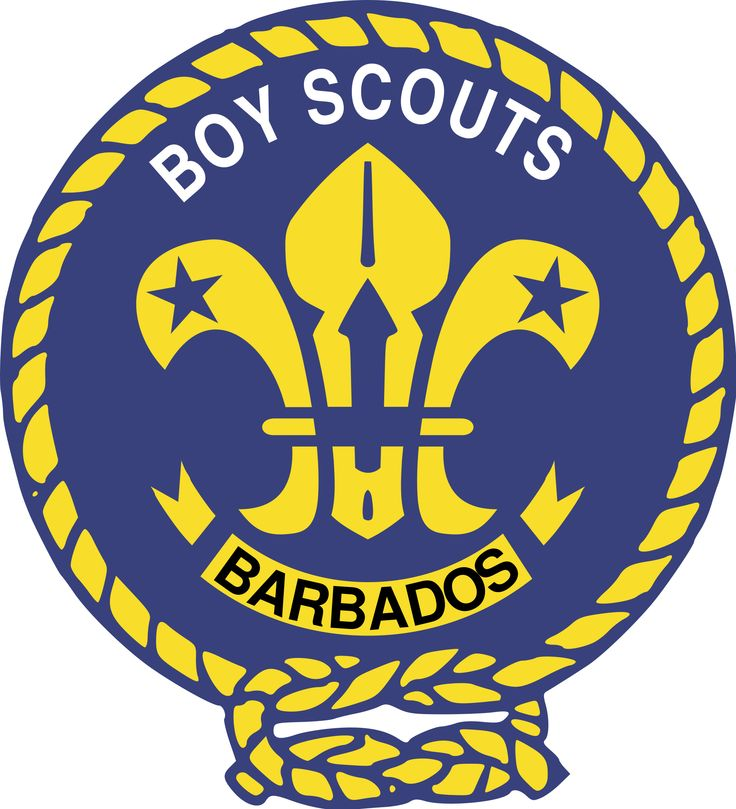 736x809 30 Best Scout Emblems Images Badges, Branches