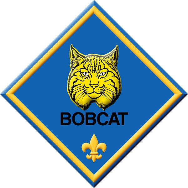 600x600 Cub Scout Bobcat Clipart Kid