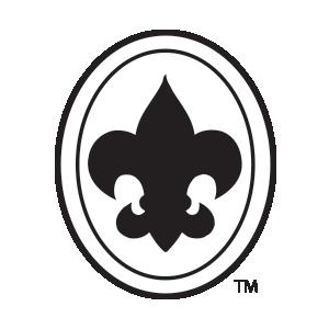 300x300 HPI Emblem gt Products gt Boy Scout
