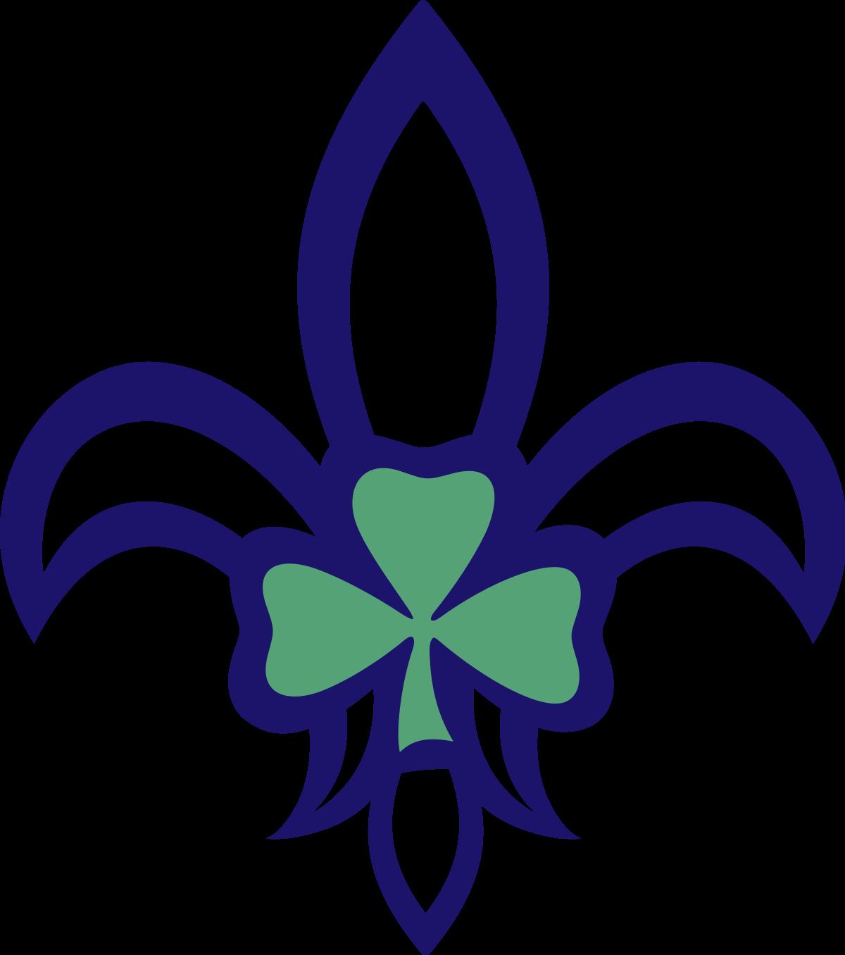 1200x1356 Scouting Ireland