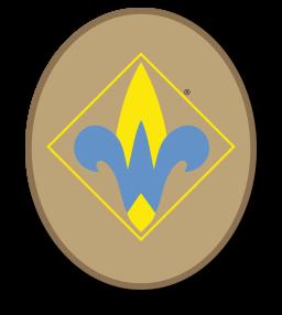256x286 Webelos Scout