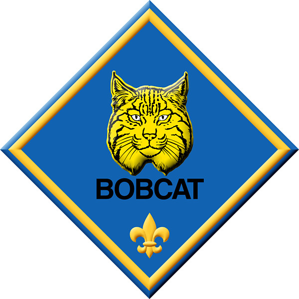 600x600 Cub Scouts Clip Art