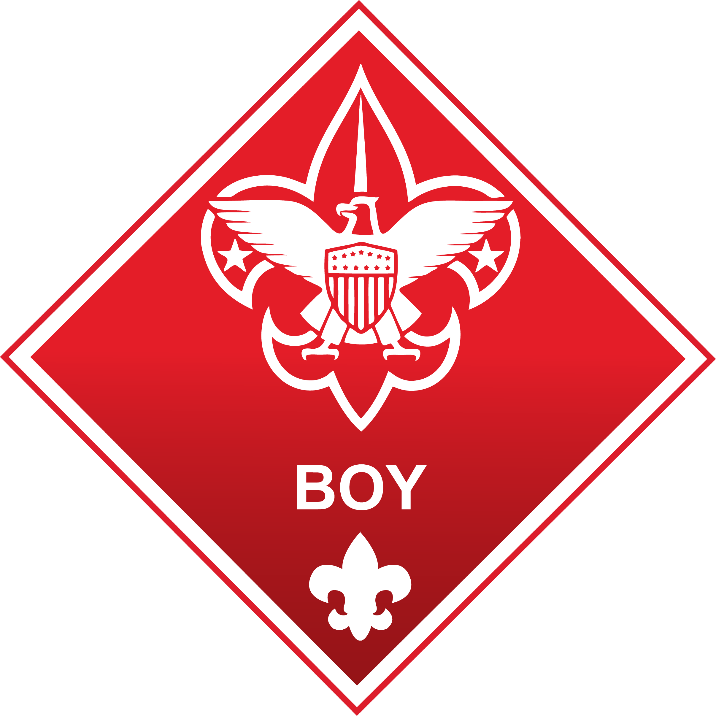2413x2413 The Academy Of Racing Boy Scouts