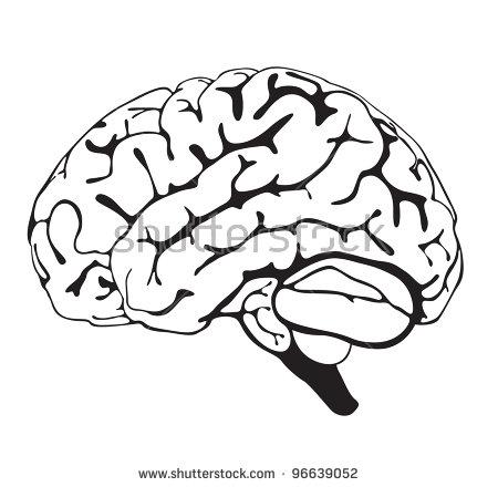 450x440 Brain Clipart Hand Drawn
