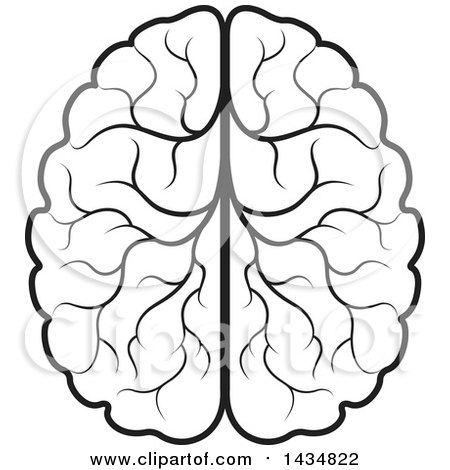 450x470 Clipart Of A Black And White Lineart Human Brain
