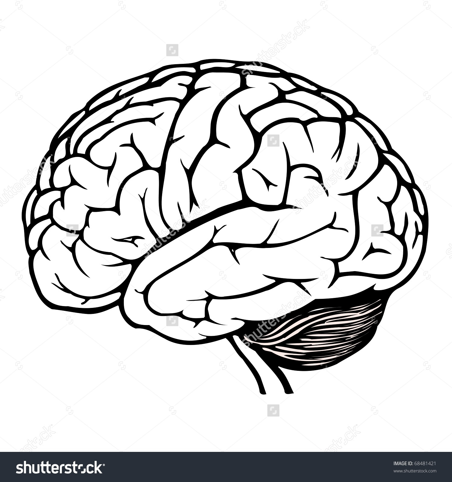 1500x1600 Human Brain Clipart Black And White Letters Example