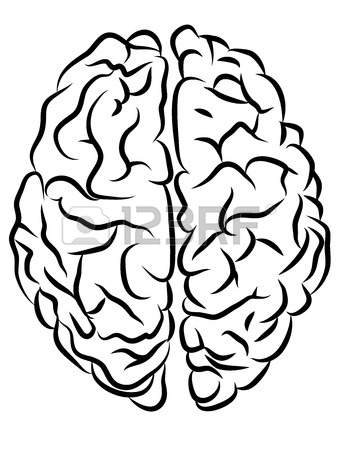 337x450 Vector Black And White Brain Contours, Cartoon Style Royalty Free