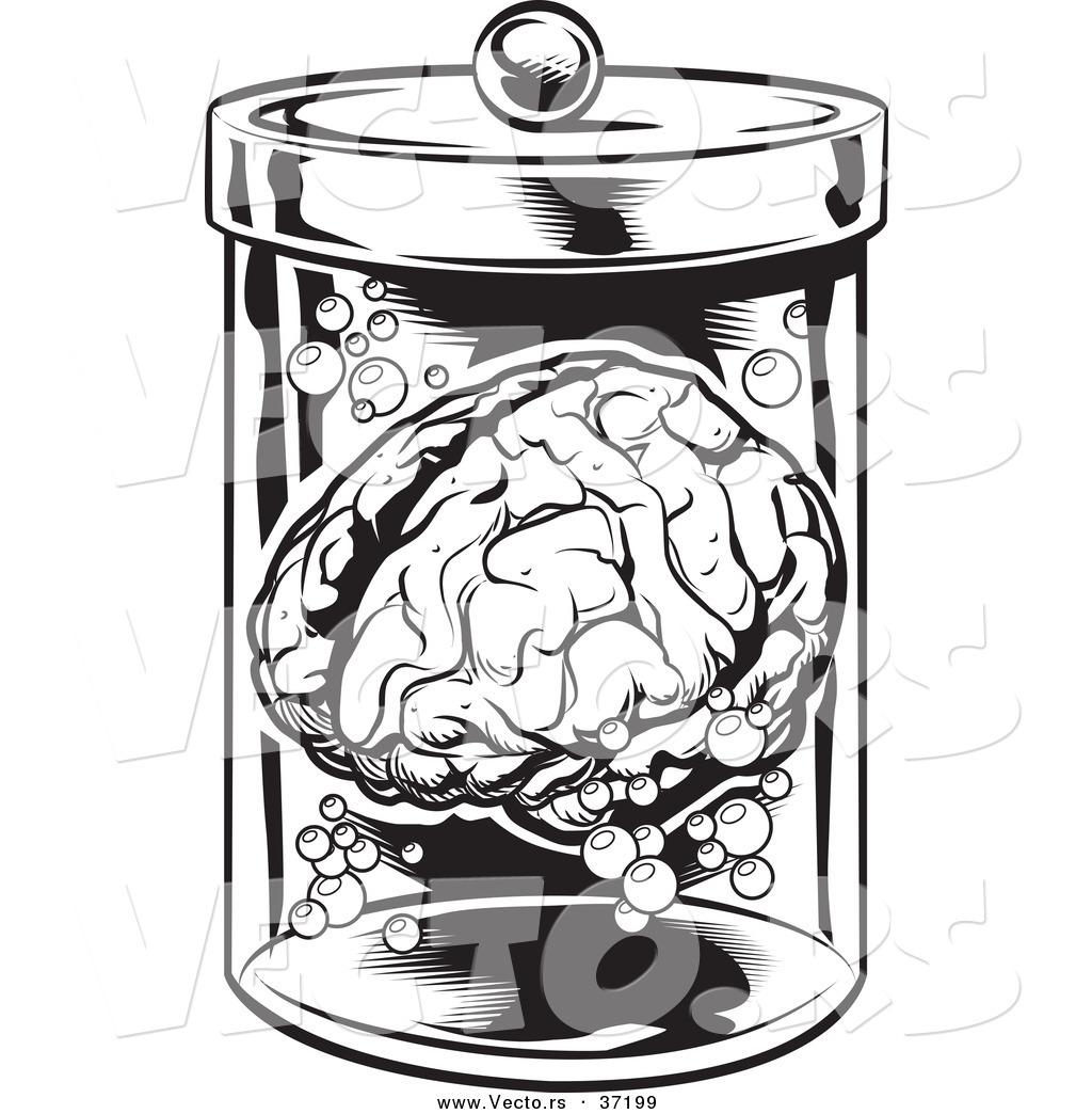1024x1044 Vector Of A Human Brain In A Jar