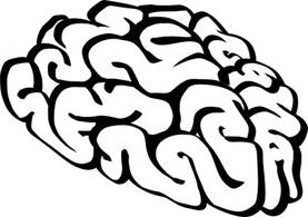 277x195 Brain Outline Clip Art