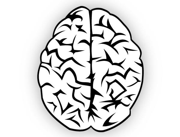 600x455 Brain Black And White Clip Art