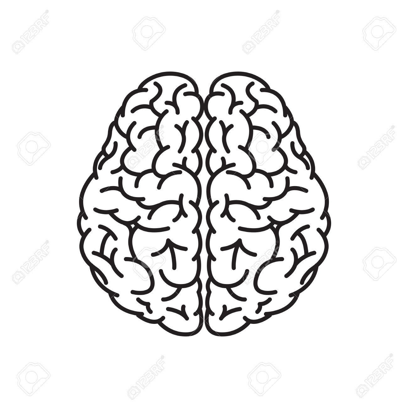 1300x1300 Brain Clipart Brain Outline