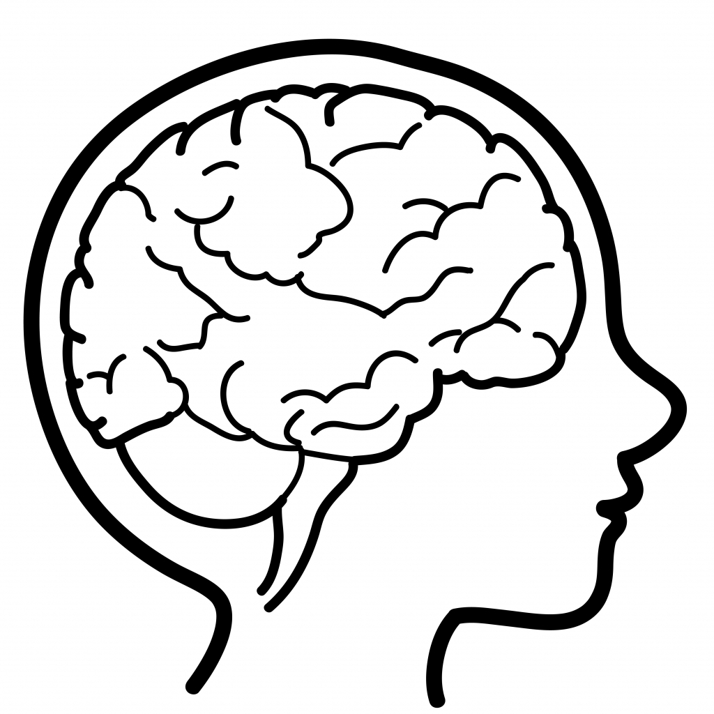 1024x1024 Brains Clipart Sketch