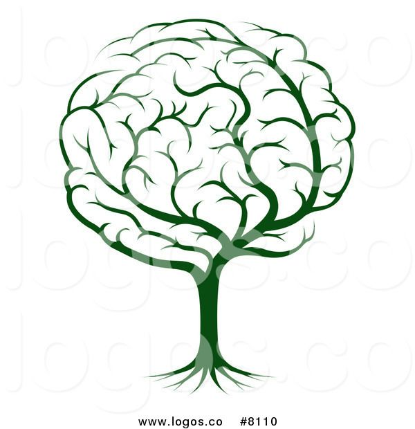 600x620 108 Best Designs On Brain Supplements Images Brain