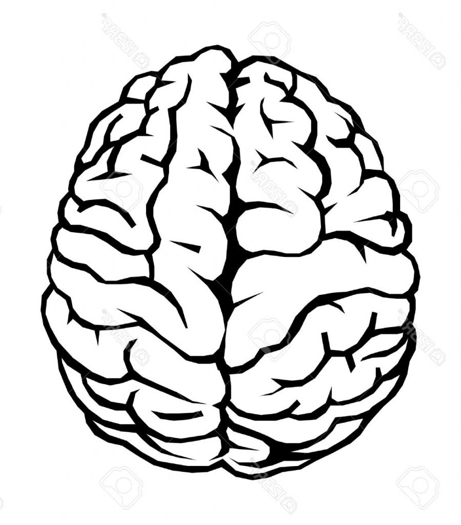 900x1024 Simple Brain Drawing Cartoon Brain Outline Clip Art Free Vector