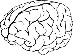 236x178 Brain Outline Clipart Black And White Forward