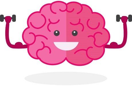 460x300 Brain Clipart Brain Break