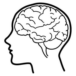 320x320 Brain Clip Art Clipart Clipartix
