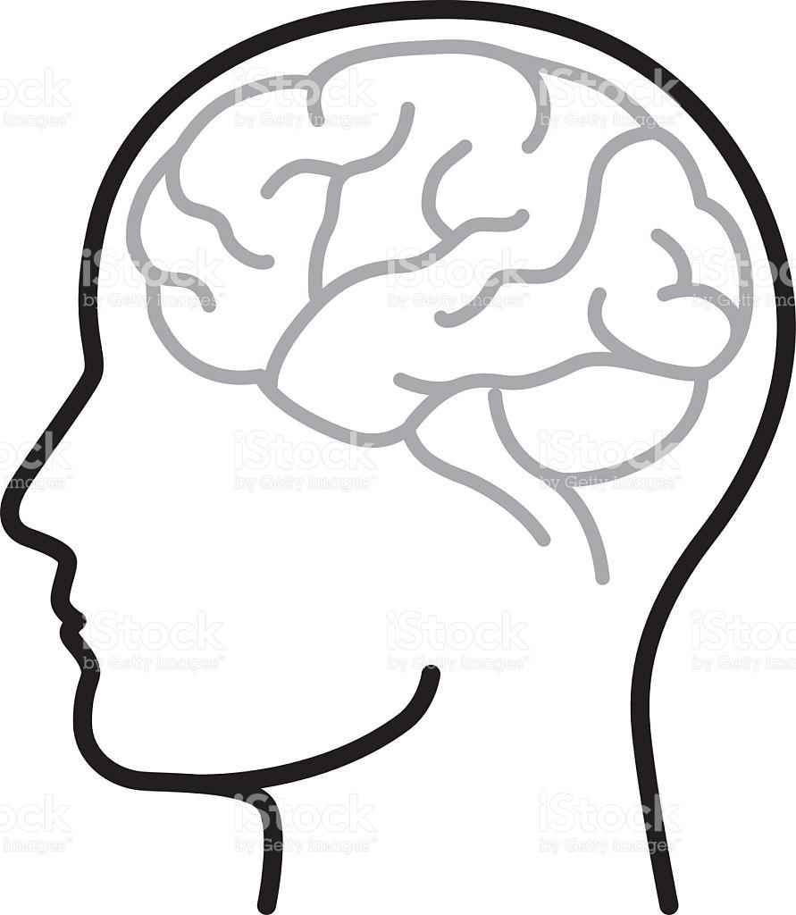 891x1024 Brain Clipart Vector Art