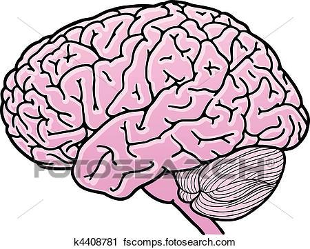 450x361 Clipart Of Human Brain K4408781
