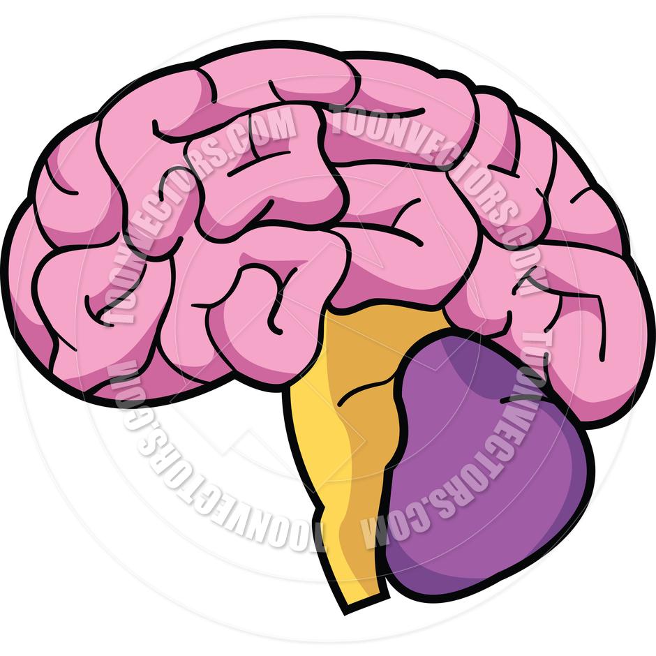 940x940 Brain Clipart