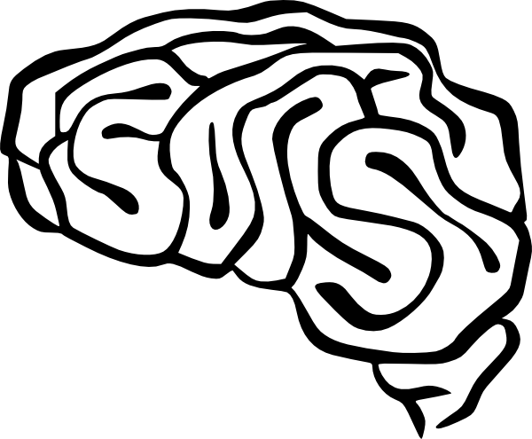 600x495 Brain Clipart Transparent