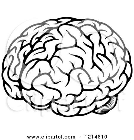 450x470 Human Brain Clipart Black And White Amp Human Brain Clip Art Black