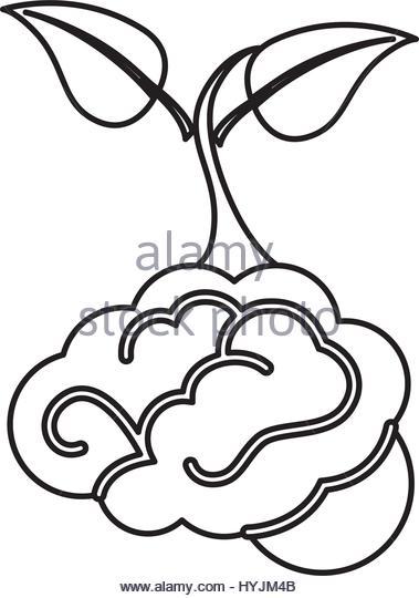 379x540 Human Brain Tree Symbol Think Stock Photos Amp Human Brain Tree