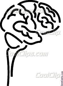 221x300 Human Brain Vector Clip Art