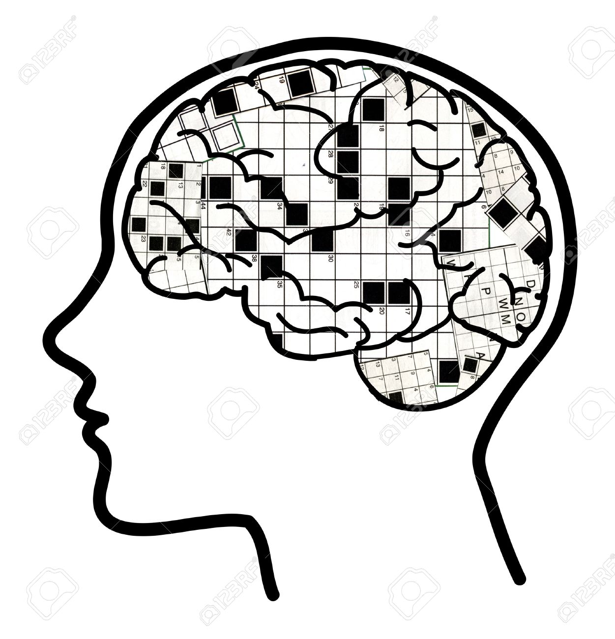 1251x1300 Profile Of A Man With Visible Brain And Crosswords Stock Photo