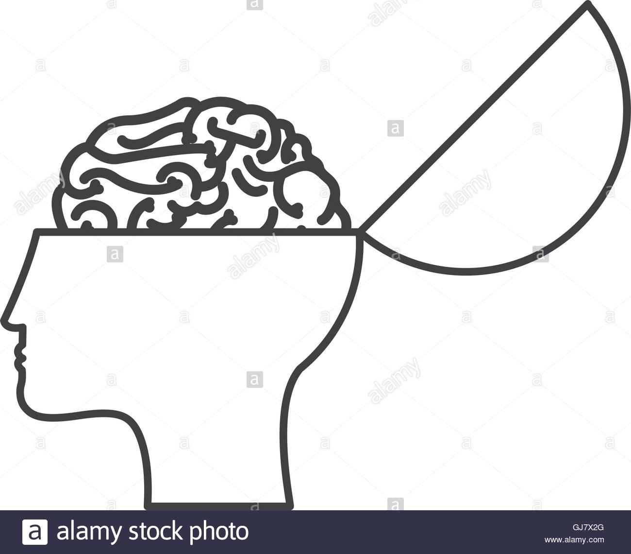 1300x1140 Open Human Head And Brain Icon Stock Vector Art Amp Illustration