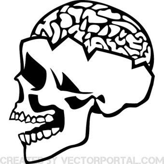 340x340 Brain Vectors Download Free Vector Art Amp Graphics