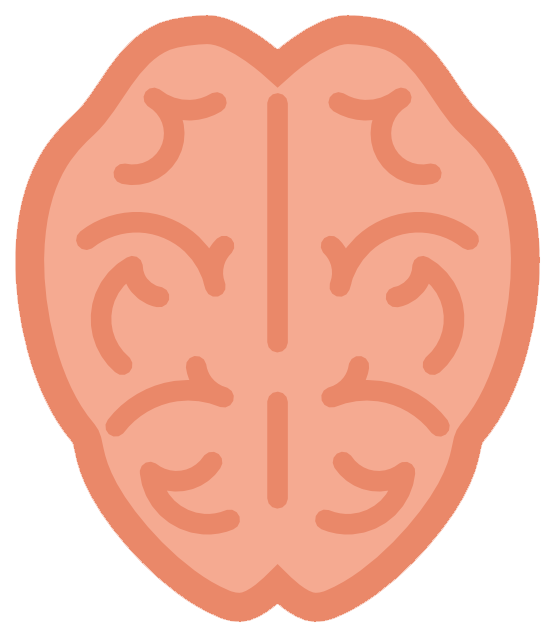 555x637 Free To Use Amp Public Domain Brain Clip Art