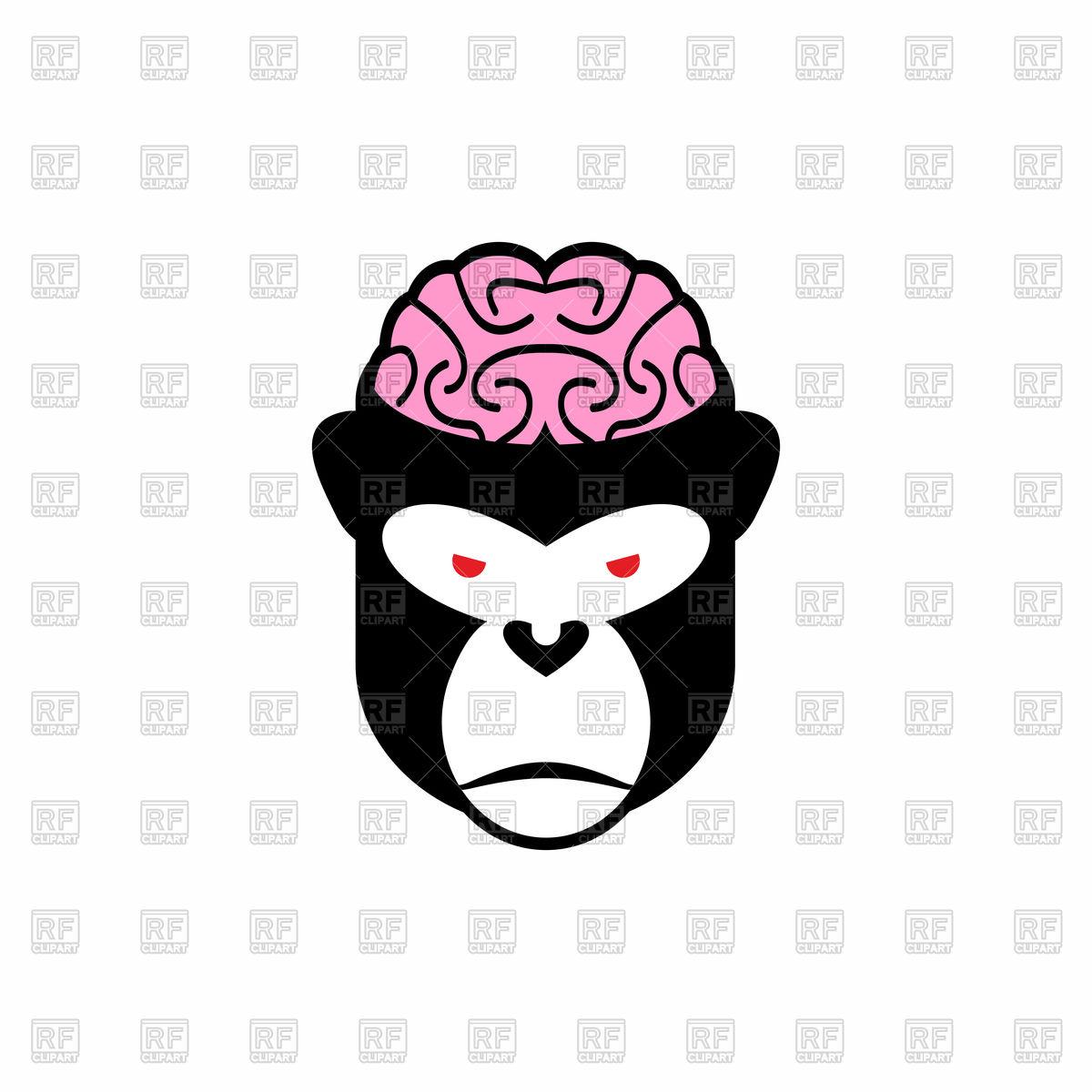 1200x1200 Monkey Brain Royalty Free Vector Clip Art Image