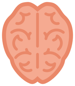 261x300 Brain Clip Art Vector Clip Art Free