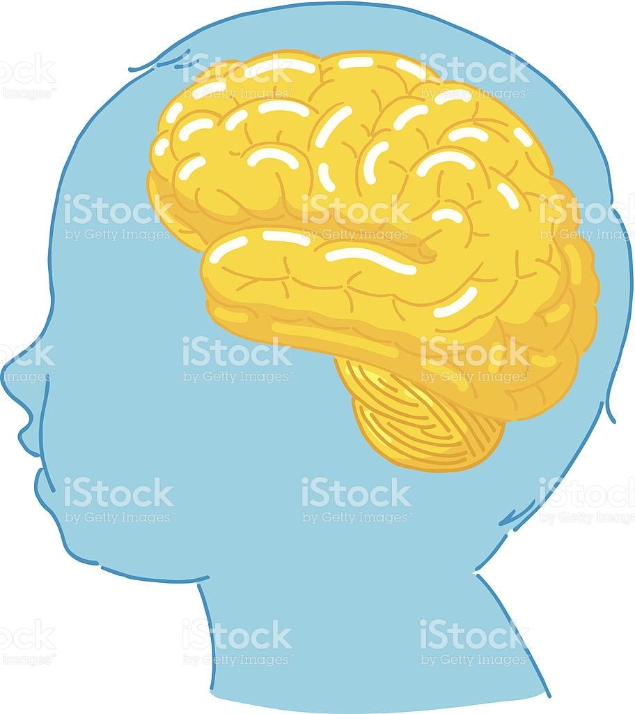 Brain Clipart Images