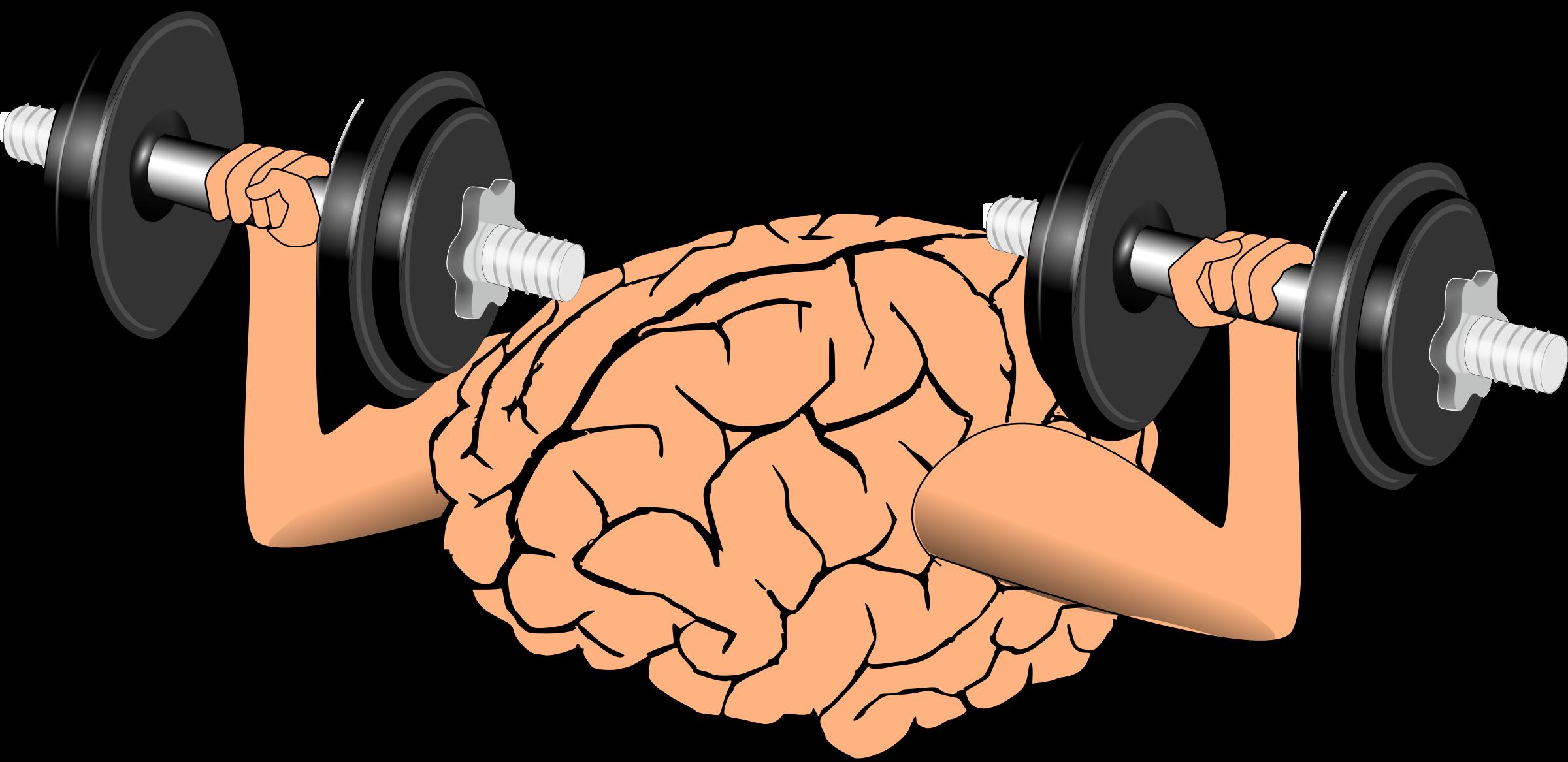 2400x1167 Brain Training Clip Art