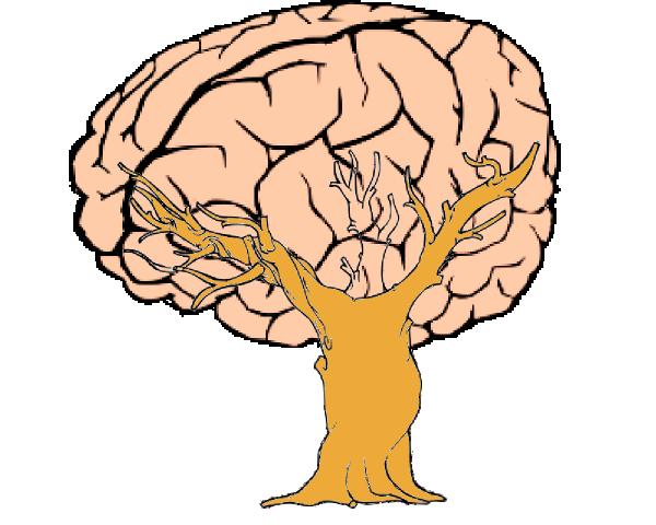 600x480 Brain Tree Clip Art