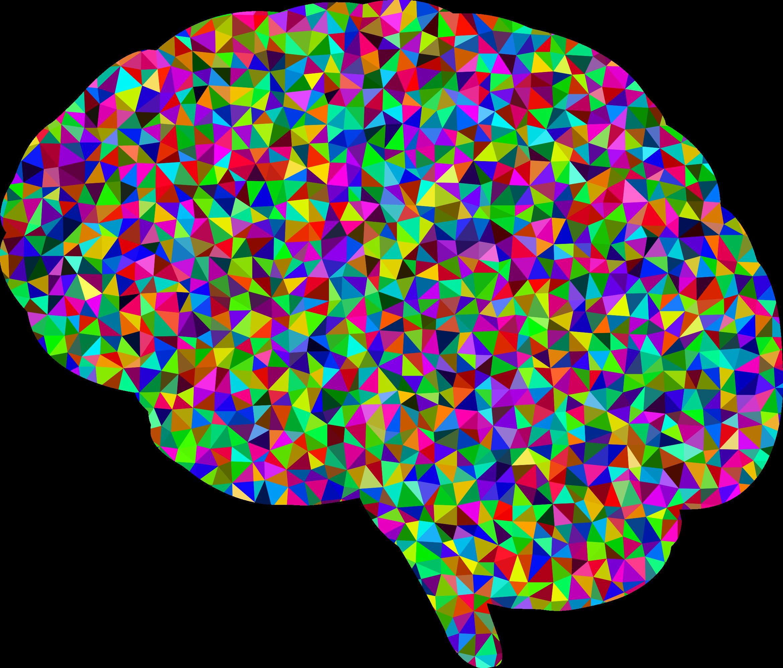 2340x1994 Brain Clipart Transparent