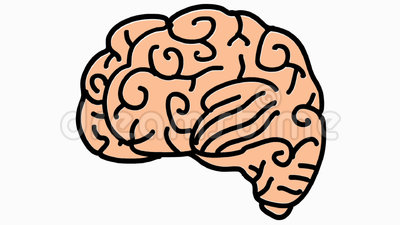 400x225 Brains Clipart Transparent Background
