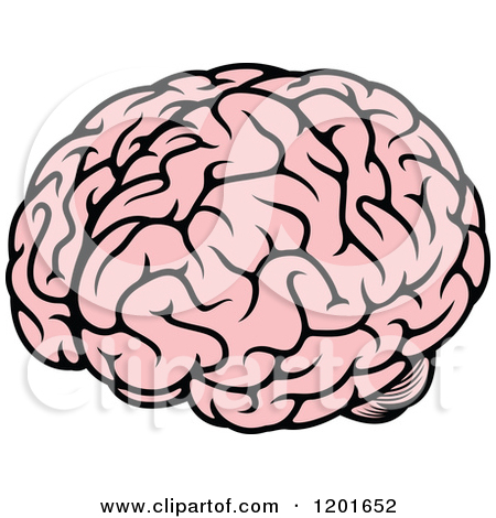 450x470 Graphics For Brain Clipart Graphics