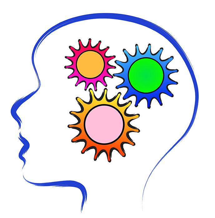 689x700 Thinking Brain Clipart