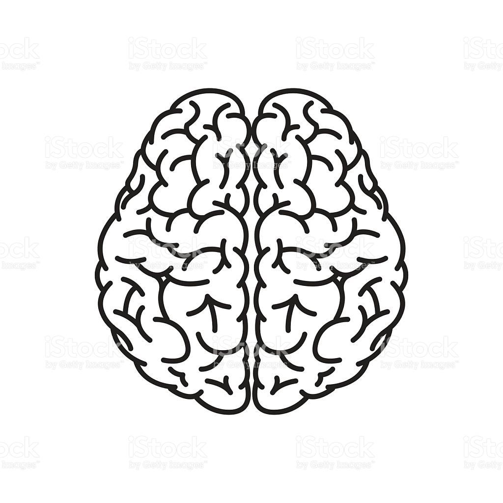 1024x1024 Top Brain Clipart