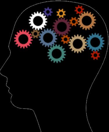 375x451 Brain Based Learning Lambert Linguistics