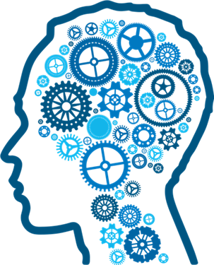 303x375 Download Brain Png Picture Hq Png Image Freepngimg