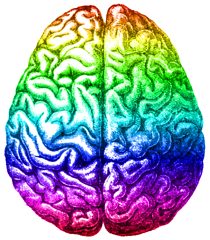 420x480 Filerainbow Brain, Aug 2014.png